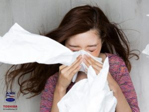 Air Conditioners and Stinging Nettles Versus Hay Fever – Who Will Win This Year?